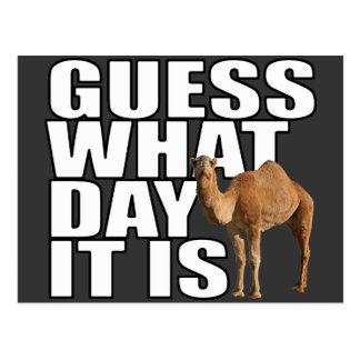 Conjetura qué día es camello del día de chepa postales
