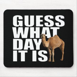 Conjetura qué día es camello del día de chepa tapete de ratones