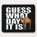Conjetura qué día es camello del día de chepa alfombrillas de raton
