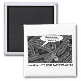 Conjugal Love In The Bacterial World Magnet