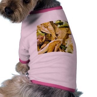 Conker Seed Pet T-shirt