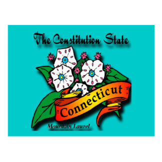 Conn Mountain Laurel Constitution State Postcard