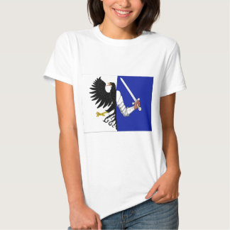 Connacht (Ireland) Flag T Shirt