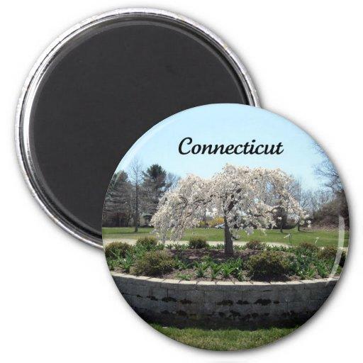 Connecticut 2 Inch Round Magnet