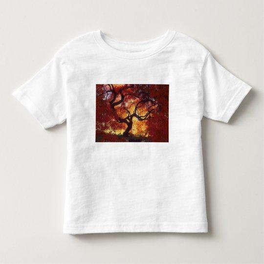 Connecticut: Darien, Japanese maple 'Acer Toddler T-shirt