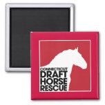 Connecticut Draft Horse Rescue magnet