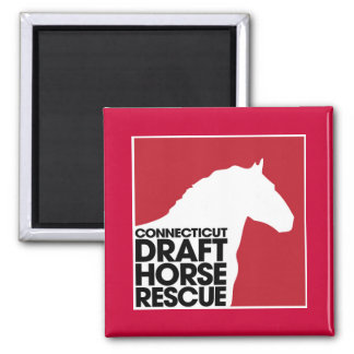 Connecticut Draft Horse Rescue magnet