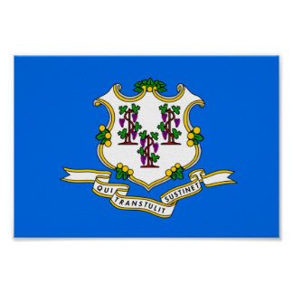 Connecticut Flag Poster