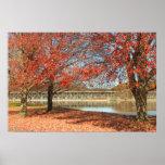 Connecticut River Foliage at Turners Falls Print