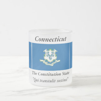 Connecticut State Flag 10 Oz Frosted Glass Coffee Mug