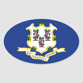 Connecticut State Flag png Sticker
