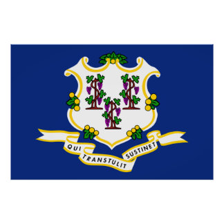 Connecticut State Flag Print