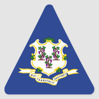 Connecticut State Flag Triangle Sticker