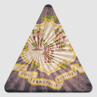 Connecticut sunburst flag souvenir triangle sticker