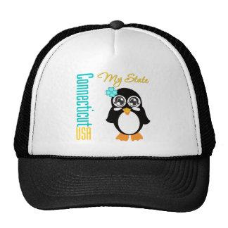 Connecticut USA Penguin Hats