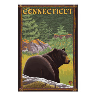 ConnecticutBlack Bear in Forest Poster