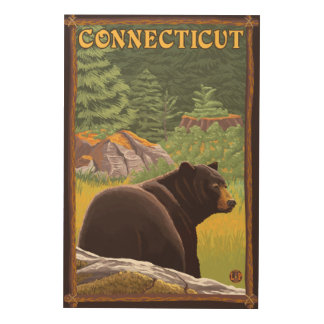 ConnecticutBlack Bear in Forest Wood Wall Art