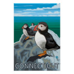 ConnecticutPuffins Scene Poster
