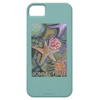 ConnecticutTidepool Scene iPhone 5 Cover