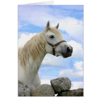 Connemara Pony Card