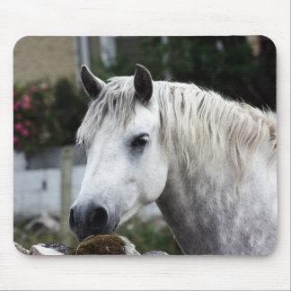 Connemara Pony Mouse Pad