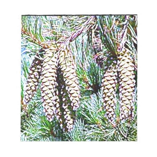 Cono de Maine White Pine Libretas Para Notas