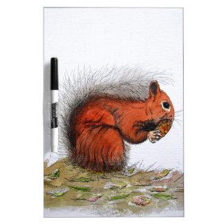 Cono del pino de la ardilla roja tableros blancos
