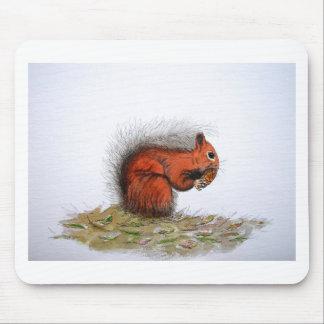 Cono del pino de la ardilla roja alfombrilla de ratón