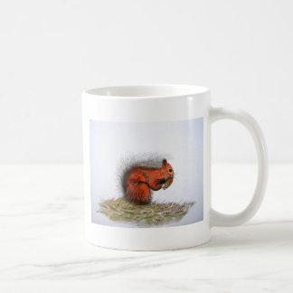 Cono del pino de la ardilla roja tazas de café