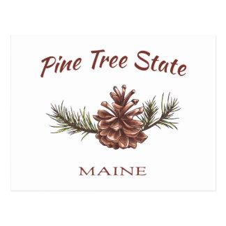 Cono del pino de Maine Postal