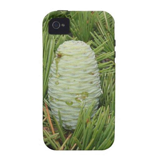 Cono del pino del árbol de navidad iPhone 4/4S carcasa