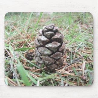 Cono del pino en un bosque tapete de ratón