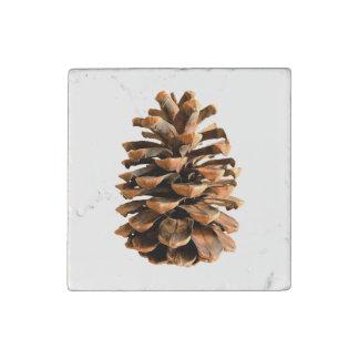 Cono del pino imán de piedra