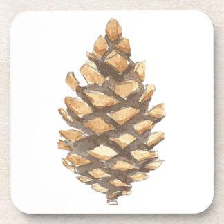 Cono del pino posavaso