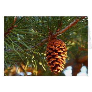 Cono del pino tarjeta de felicitación