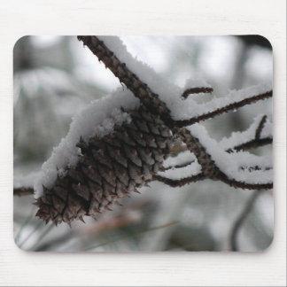 cono nevoso del pino alfombrillas de ratón