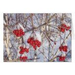 Conos de la nieve de la cereza tarjeta de felicitación