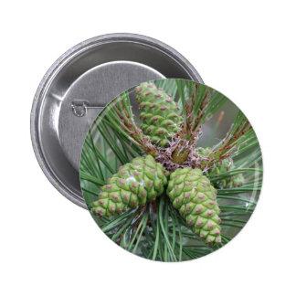Conos del pino del día de fiesta pin redondo de 2 pulgadas