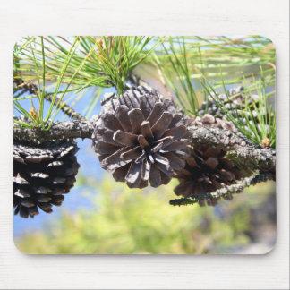 Conos del pino alfombrillas de ratón