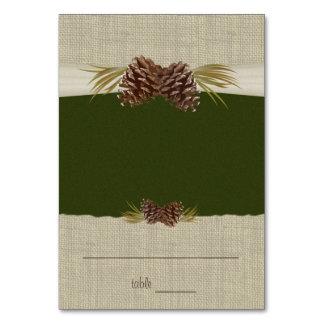 Conos del pino y tarjeta verde del asiento de la a
