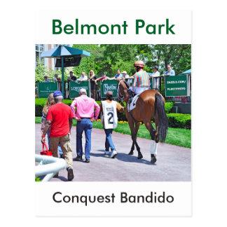 Conquest Bandido Postcard