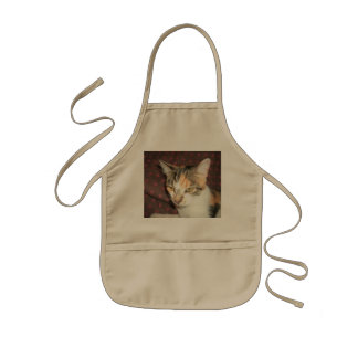 Conquest Kitty Kids' Apron
