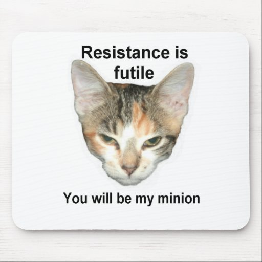 Conquest Kitty Mousepad