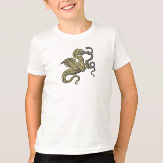 Conquista del dragón sobre serpiente playera
