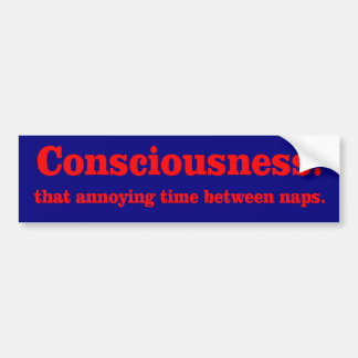 Consciousness Bumper Sticker