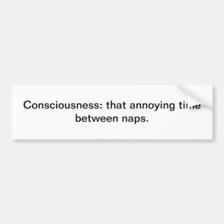 Consciousness Car Bumper Sticker