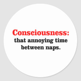 Consciousness Classic Round Sticker