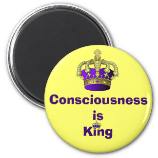 Consciousness  is King magnet
