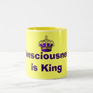 Consciousness  is King mug