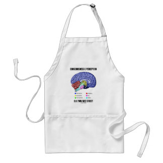 Consciousness Perception Is A Two-Way Street Brain Adult Apron